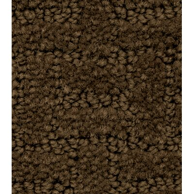 Soft-Touch Texture Blocks Kids Rug Rug Size: 4' x 6'