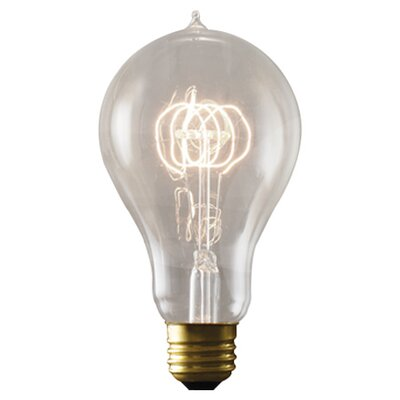 40W E26/Medium (Standard) Incandescent Light Bulb (Set of 3)