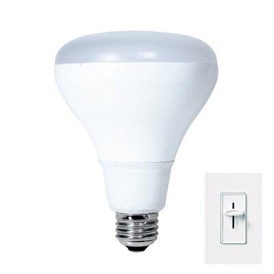 15W LED Light Bulb (Set of 2)