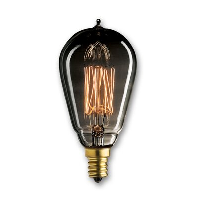 25W Smoke Incandescent Light Bulb (Set of 5)