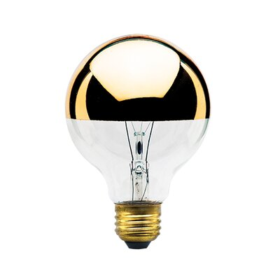 40W Amber E26/Medium (Standard) Incandescent Light Bulb (Set of 7) Wattage: 40W