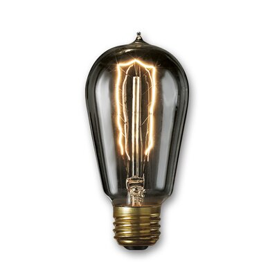40W Smoke Incandescent Light Bulb