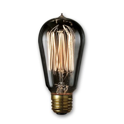 Smoke Incandescent Light Bulb (Set of 4) Wattage: 40
