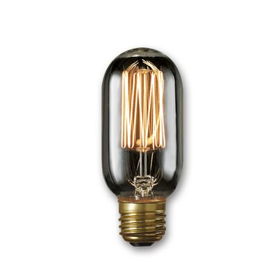 40W Smoke Incandescent Light Bulb (Set of 5)