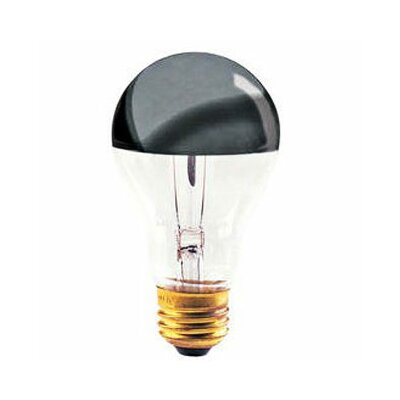 100W 120-Volt Light Bulb (Set of 9)