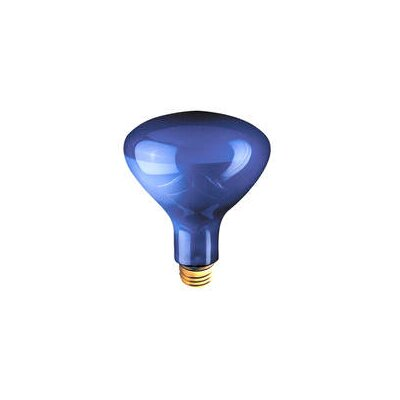 120-Volt Light Bulb (Set of 6) Wattage: 75W