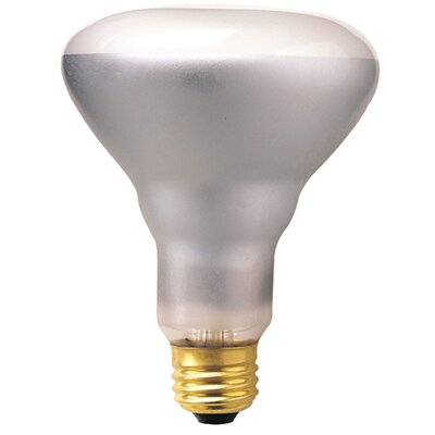 E26/Medium Incandescent Light Bulb (Set of 14) Wattage: 65W