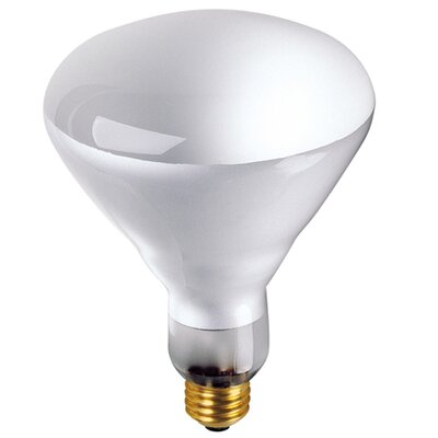 65W 130-Volt ( 2700K) Incandescent Light Bulb (Set of 8)