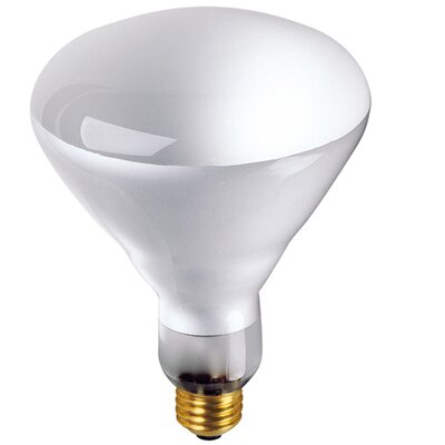 65W 120-Volt (2700K) Incandescent Light Bulb (Set of 8)