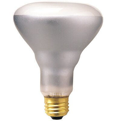 65W 120-Volt (2700K) Incandescent Light Bulb (Set of 14)