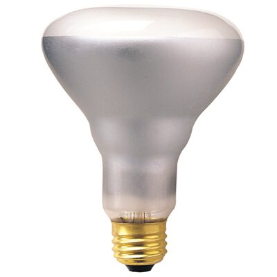 Dimmable 130-Volt (2700K) Incandescent Light Bulb (Set of 14) Wattage: 65W
