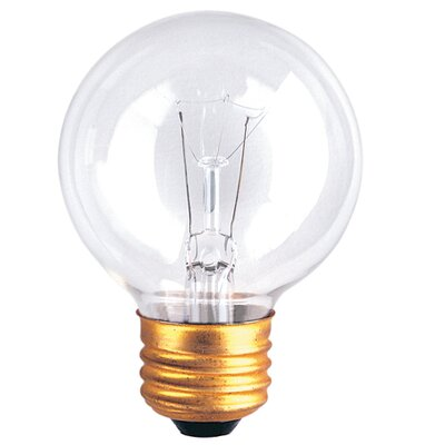 25W 120-Volt (2700K) Incandescent Light Bulb (Set of 20)