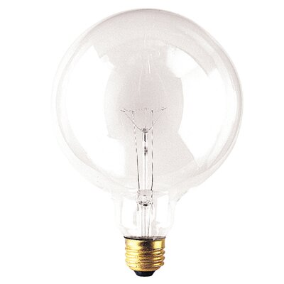 25W 125-Volt (2540K) Incandescent Light Bulb (Set of 8)
