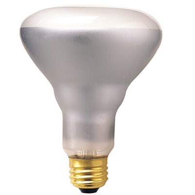E26/Medium Incandescent Light Bulb (Set of 14) Wattage: 50W