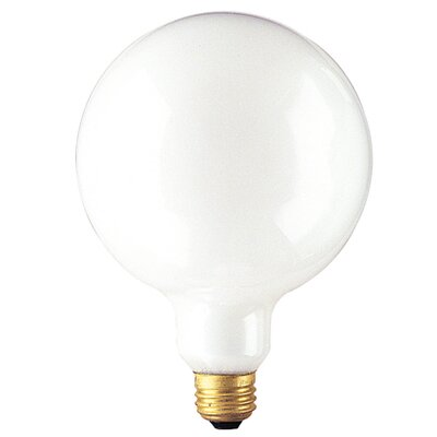 25W 125-Volt (2530K) Incandescent Light Bulb (Set of 8)