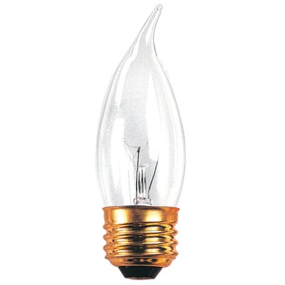 40W 120-Volt (2700K) Incandescent Light Bulb (Set of 45)