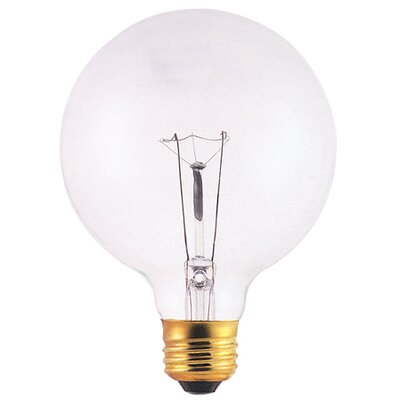 40W 120-Volt (2550K) Incandescent Light Bulb (Set of 24)
