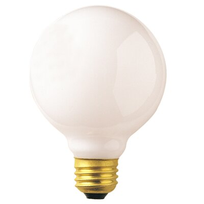 40W 120V Incandescent Light Bulb (Set of 24)