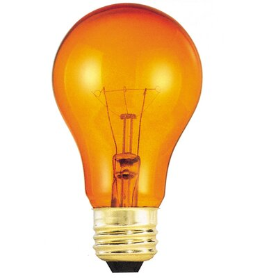 Transparent Orange (2700K) Incandescent Light Bulb (Pack of 12) (Set of 2)
