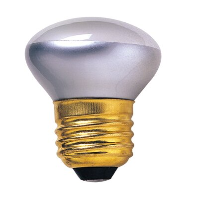 Intermediate 120-Volt (2600K) Incandescent Light Bulb (Set of 14) Bulb Type: 25W E26 Standard Base
