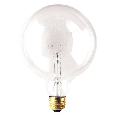 100W 125-Volt (2700K) Incandescent Light Bulb (Set of 8)