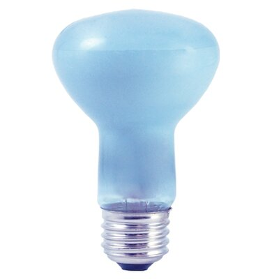 45W (2700K) Incandescent Light Bulb (Set of 5)
