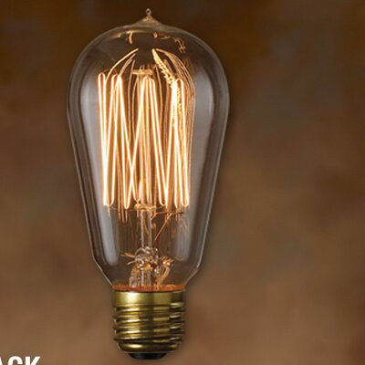 Nostalgic Edison Warm Glow (2100K) Incandescent Light Bulb (Pack of 6)