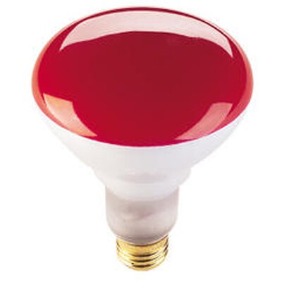 75W Red 120-Volt Halogen Light Bulb