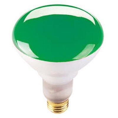 75W Green 120-Volt Halogen Light Bulb