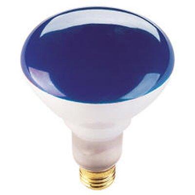 75W Blue 120-Volt Halogen Light Bulb (Set of 8)