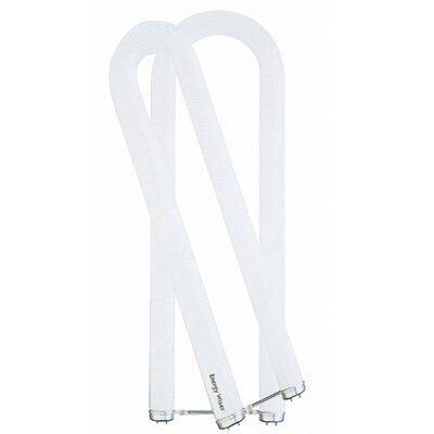 32W Fluorescent Light Bulb Color: Warm White