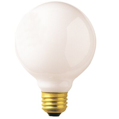 25W 120-Volt (2520K) Incandescent Light Bulb (Set of 24)
