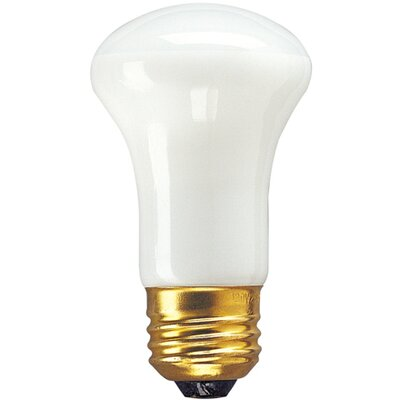 40W (2600K) Incandescent Light Bulb