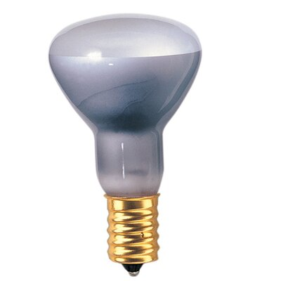 European 40W Grey (2600K) Incandescent Light Bulb (Set of 14)