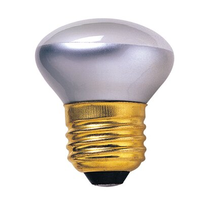 40W Grey (2600K) Incandescent Light Bulb (Set of 14)
