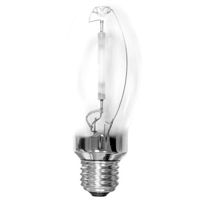 E26/Medium Light Bulb (Set of 3) Wattage: 50W