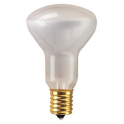 Intermediate 40W (2600K) Incandescent Light Bulb (Set of 14)