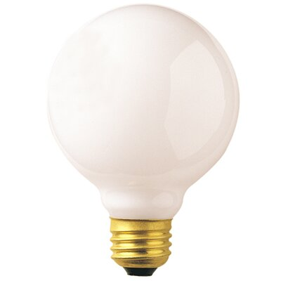 25W Frosted (2510K) Incandescent Light Bulb (Set of 24)
