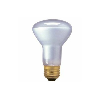 45W120-Volt (2800K) Halogen Light Bulb (Set of 7)