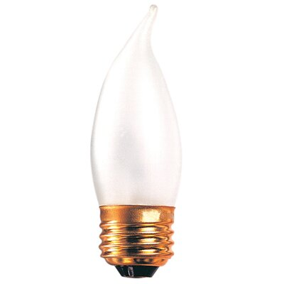 Frosted 130-Volt (2700K) Incandescent Light Bulb (Set of 45) Wattage: 40W