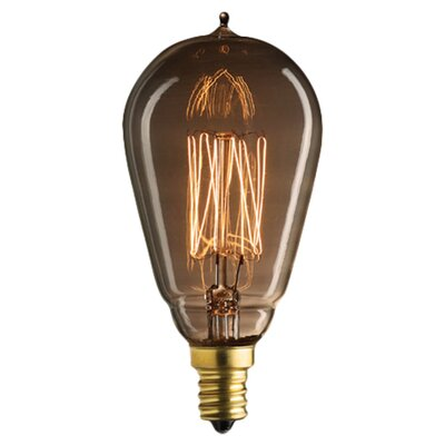 Nostalgic Edison 25W Incandescent Light Bulb (Set of 5)