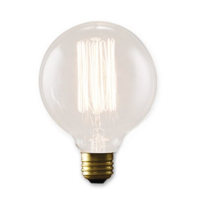 Nostalgic Edison 40W Incandescent Light Bulb (Set of 4)