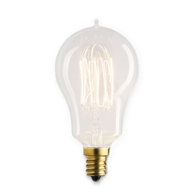 Flynn 25W Incandescent Light Bulb (Set of 5)