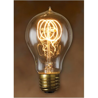 Nostalgic Edison Warm Glow Incandescent Light Bulb (Pack of 6) Wattage: 25W
