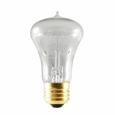 40W 120-Volt 2000K E26-Light Bulb (Set of 4)