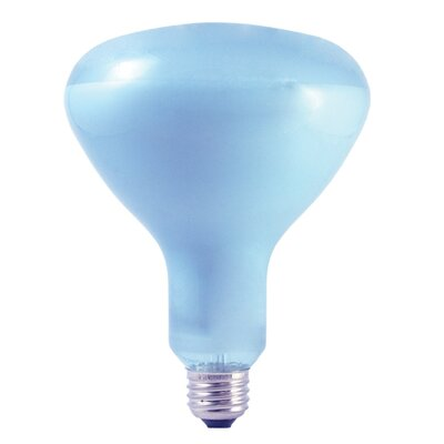 65W 120-Volt (2650K) R40-Light Bulb (Set of 3)