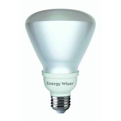 16W E26 Compact Fluorescent Light Bulb (Set of 4)