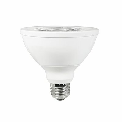 75W E26 LED Light Bulb (Set of 2)