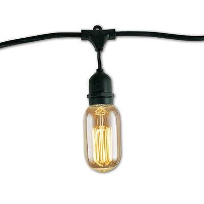 1500W Antique E26/Medium (Standard) Incandescent Light Bulb