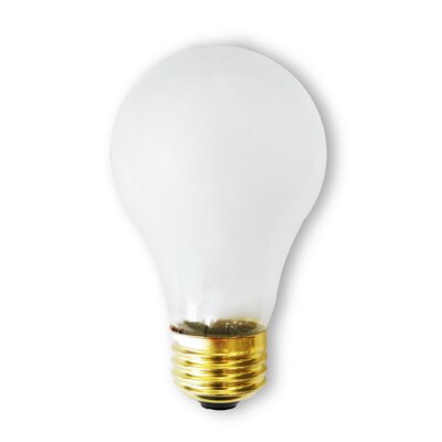 130-Volt Incandescent Light Bulb (Pack of 2) (Set of 26) Wattage: 40